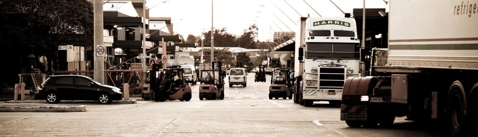 Sydney Markets Flemington